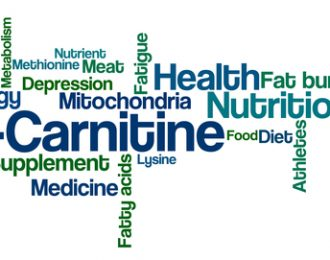 L-Carnitine 500 mg – 30 tablets