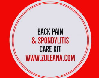 Pain and Spondylitis Care kit- Back Pain – Devils Claw – 100 Caps- 525mg, Turmeric 600 mg Bromelain 300mg Capsules- 90 caps- Organic Ginger Root Tea- 24 bags